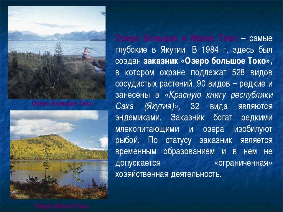 Озера Большое и Малое Токо – самые глубокие в Якутии. В 1984 г. здесь был соз...