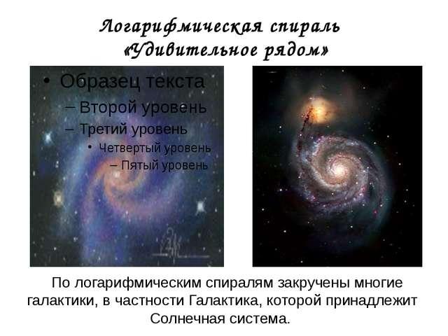 Логарифмическая спираль «Удивительное рядом» По логарифмическим спиралям закр...