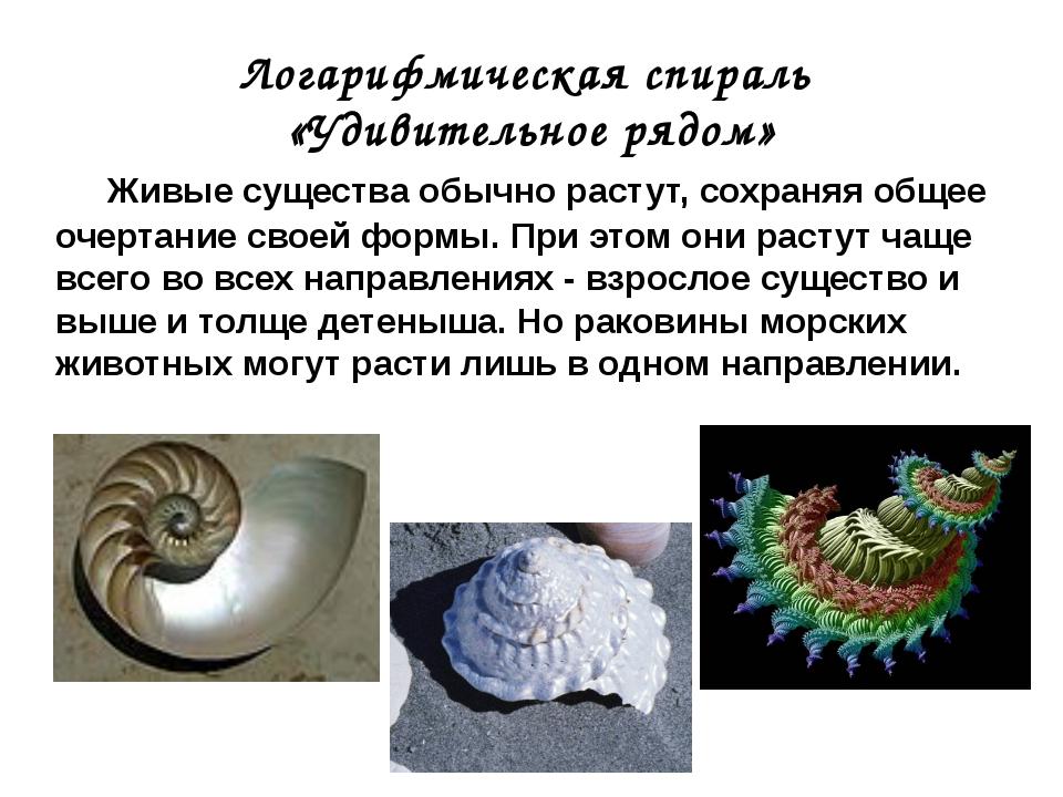 Живые существа обычно растут, сохраняя общее очертание своей формы. При этом...