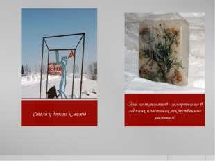 Балта О.А. Стела у дороги к музею Один из экспонатов - замороженые в ледяных