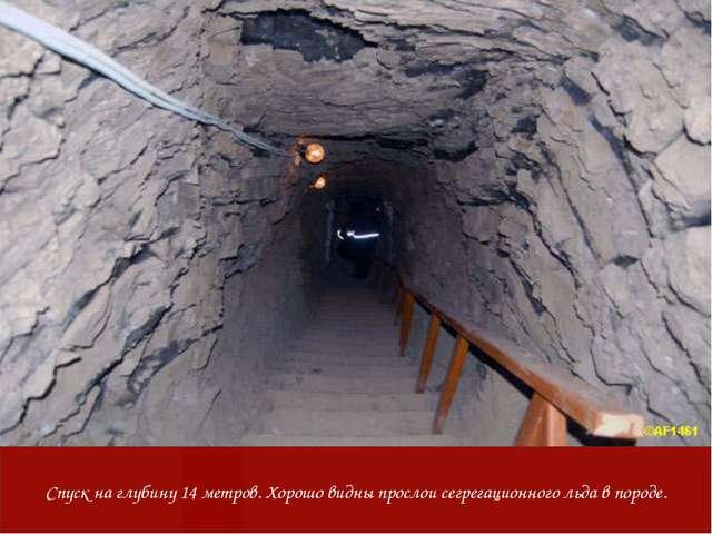 Балта О.А. Спуск на глубину 14 метров. Хорошо видны прослои сегрегационного...