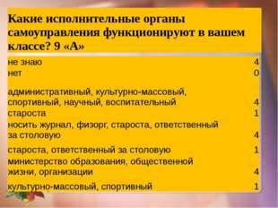 Какие исполнительные органы самоуправления функционируют в вашемклассе?9 «А»