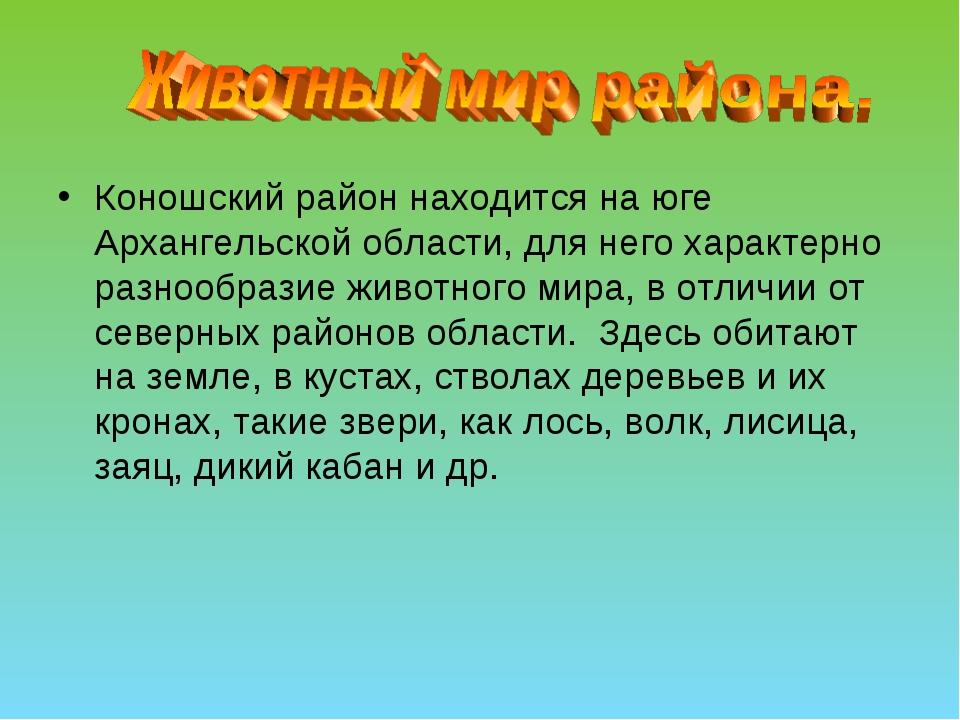 Коношский район находится на юге Архангельской области, для него характерно...