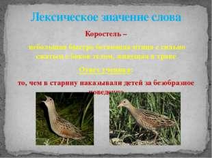 Коростель – небольшая быстро бегающая птица с сильно сжатым с боков телом, жи