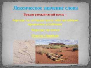 Браздя рассыпчатый песок – бороздя, т.е. оставляя после себя неглубокое продо