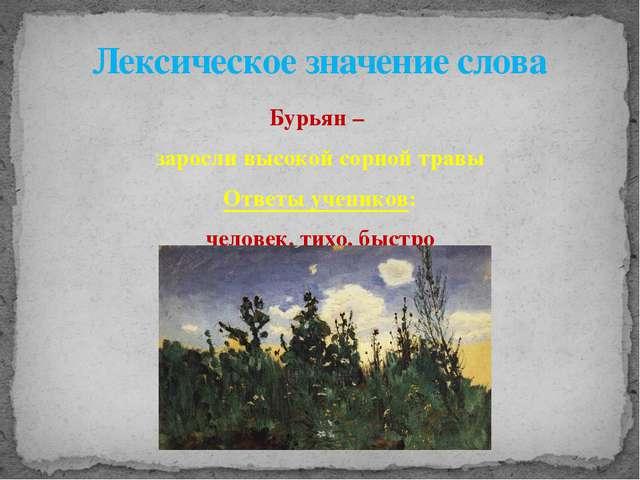 Бурьян – заросли высокой сорной травы Ответы учеников: человек, тихо, быстро...
