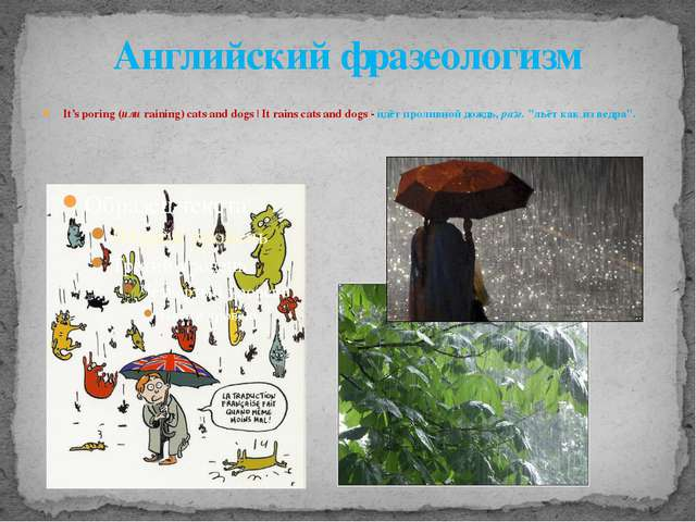 Английский фразеологизм It's poring (или raining) cats and dogs | It rains ca...