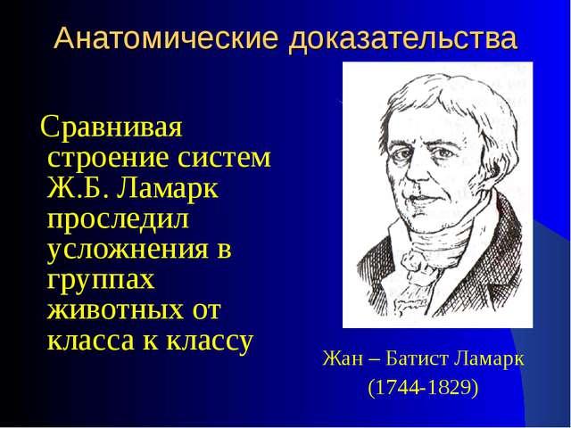 Анатомические доказательства Жан – Батист Ламарк (1744-1829) Сравнивая строен...