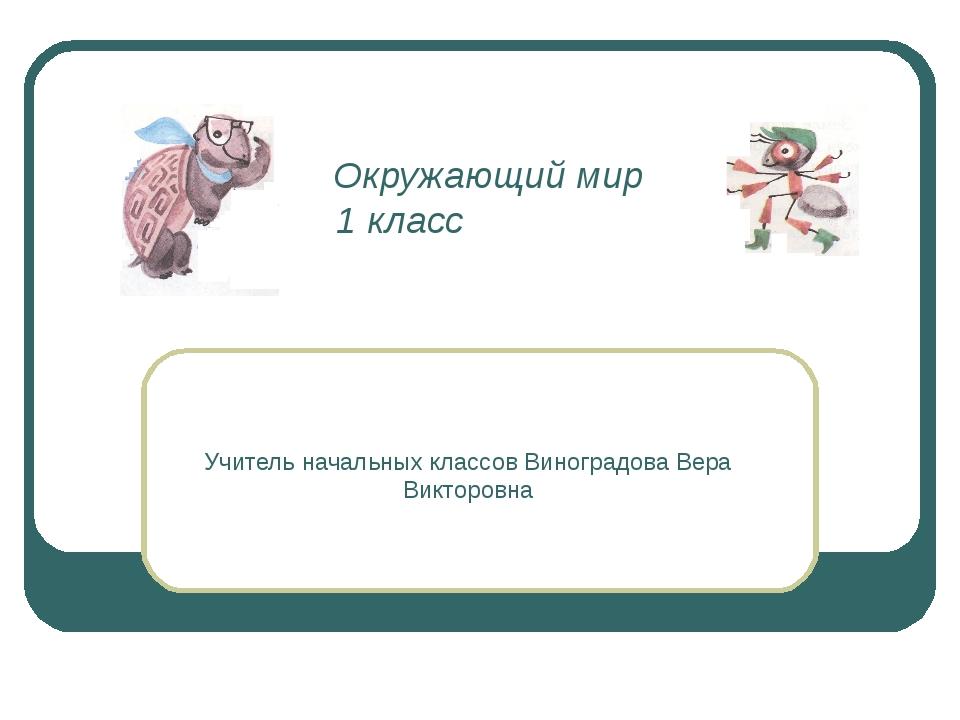 Окружающий мир 1 класс Учитель начальных классов Виноградова Вера Викторовна