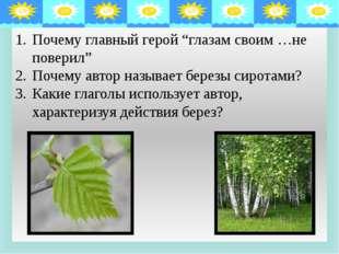 Описание берез. Стволы Ветви Листва Толщиной с детскую руку, белые; пестрели