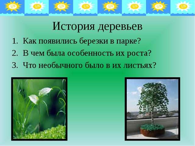История деревьев Как появились березки в парке? В чем была особенность их ро...