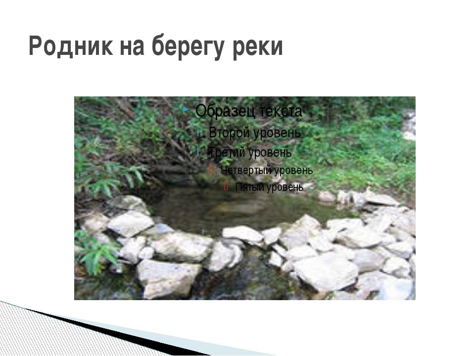Родник на берегу реки