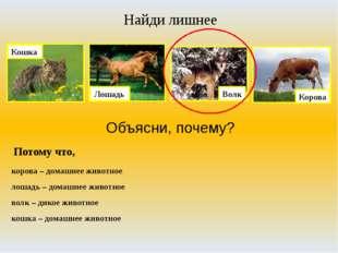 Найди лишнее Объясни, почему? Потому что, корова – домашнее животное лошадь –