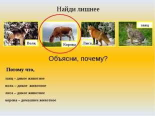 Найди лишнее Объясни, почему? Потому что, заяц – дикое животное волк – дикое
