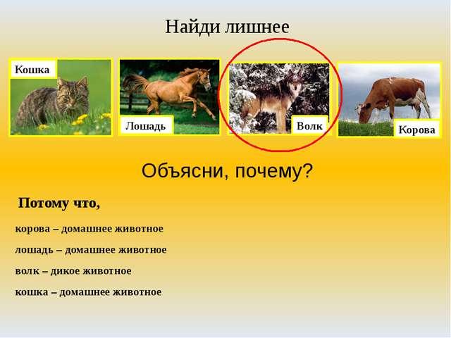 Найди лишнее Объясни, почему? Потому что, корова – домашнее животное лошадь –...