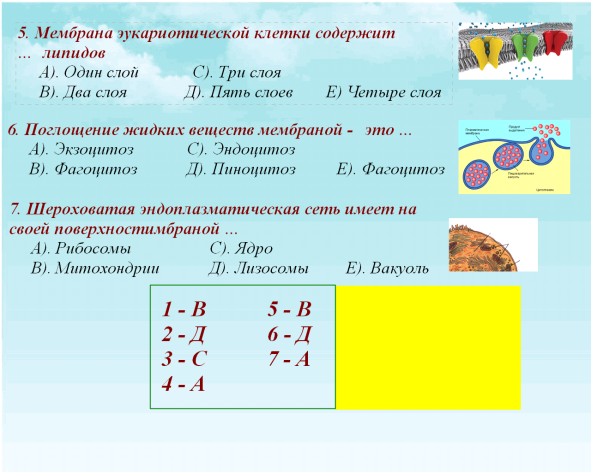 C:\Documents and Settings\test\Рабочий стол\я.bmp