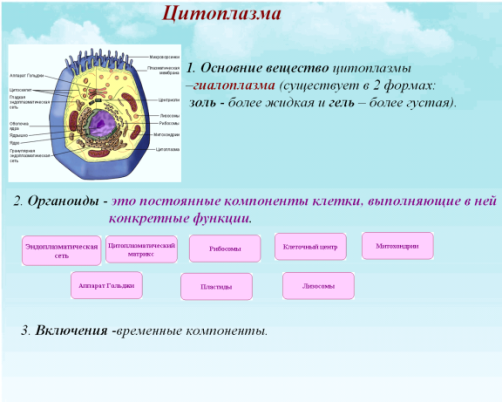 C:\Documents and Settings\test\Рабочий стол\5.bmp