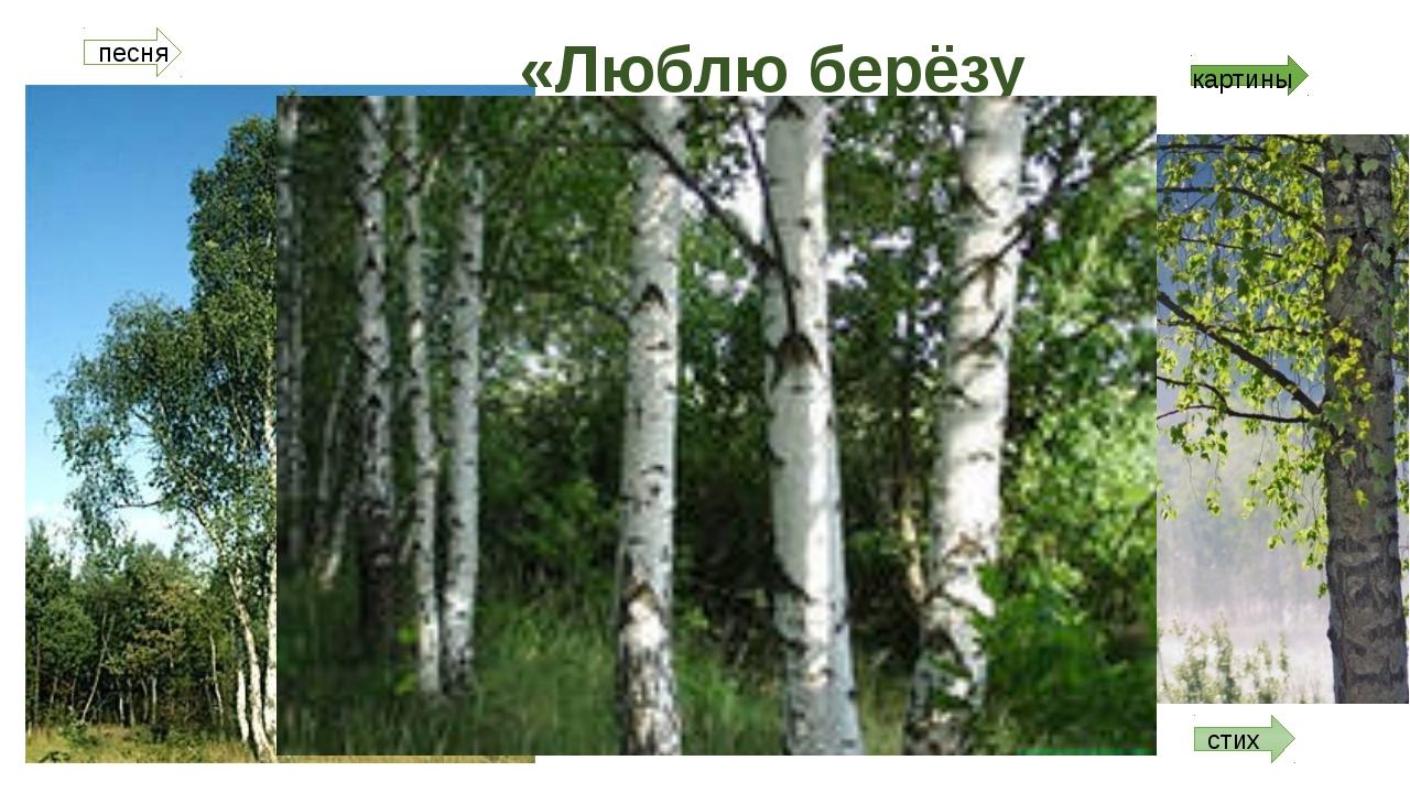 «Люблю берёзу русскую…» картины стих песня