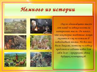 Немного из истории Около одиннадцати тысяч лет назад человека посетила интере