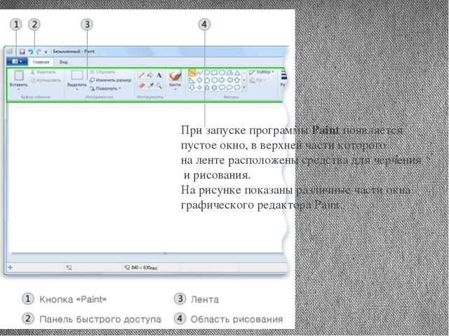 При запуске программы Paint появляется пустое окно, в верхней части которого...