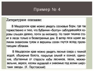 Пример № 4
