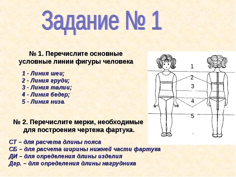 № 1. Перечислите основные условные линии фигуры человека 1 - Линия шеи; 2 - Л...