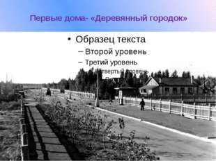 Первые дома- «Деревянный городок»