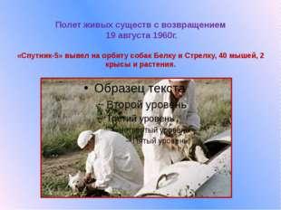 Полет живых существ с возвращением  19 августа 1960г.  «Спутник-5» вывел на о