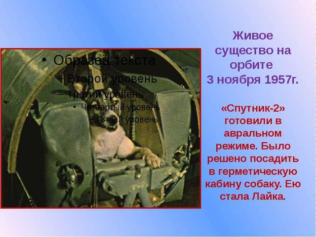 Живое существо на орбите  3 ноября 1957г.  «Спутник-2» готовили в авральном р...