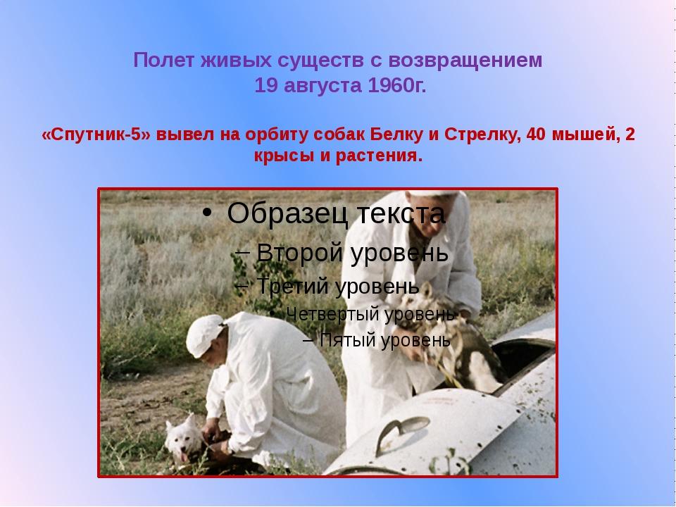 Полет живых существ с возвращением  19 августа 1960г.  «Спутник-5» вывел на о...