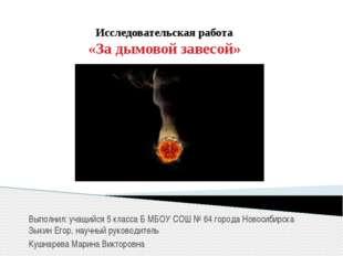 Исследовательская работа «За дымовой завесой» Выполнил: учащийся 5 класса Б М