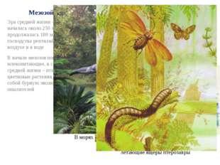 Мезозой Эра средней жизни – мезозой – началась около 250 млн лет назад и прод