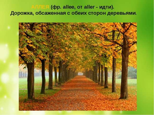 АЛЛЕЯ (фр.allee, отaller- идти). Дорожка, обсаженная с обеих сторон деревь...