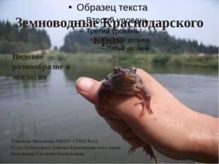 Земноводные Краснодарского края Видовое разнообразие и экология Учитель биоло