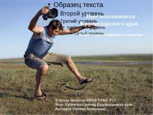 Пресмыкающиеся Краснодарского края. Видовое разнообразие и экология Учитель