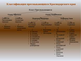 Классификация пресмыкающихся Краснодарского края Класс Пресмыкающиеся ОтрядЧе