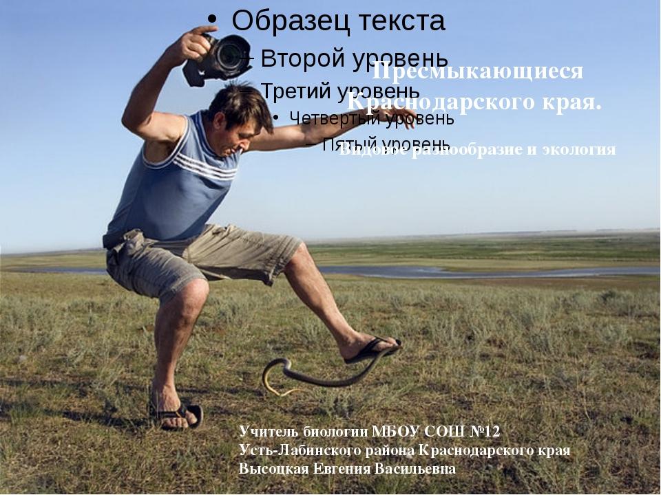 Пресмыкающиеся Краснодарского края. Видовое разнообразие и экология Учитель...