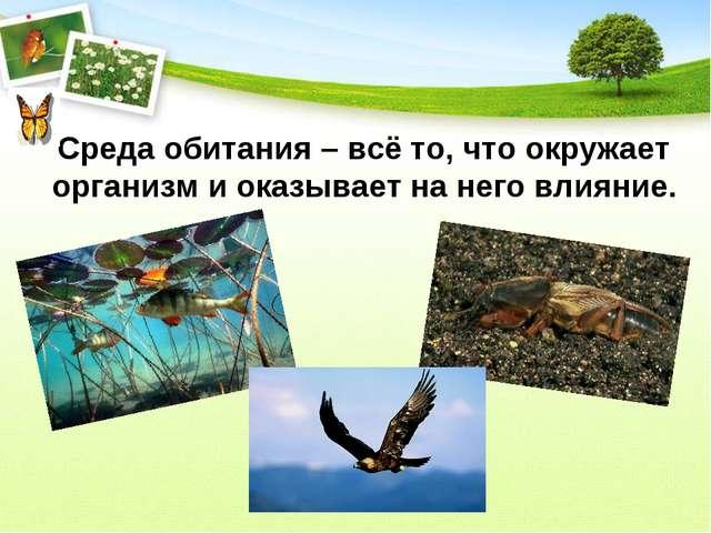 Среда обитания – всё то, что окружает организм и оказывает на него влияние.
