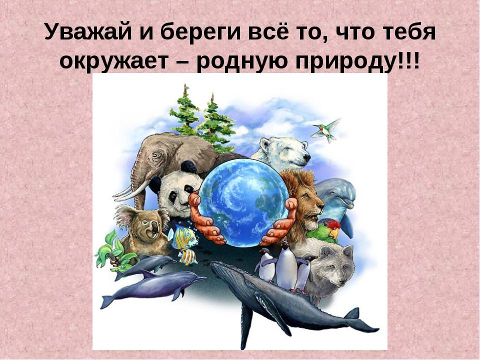 Уважай и береги всё то, что тебя окружает – родную природу!!!