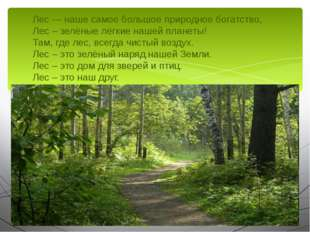Лес — наше самое большое природное богатство, Лес – зелёные лёгкие нашей план