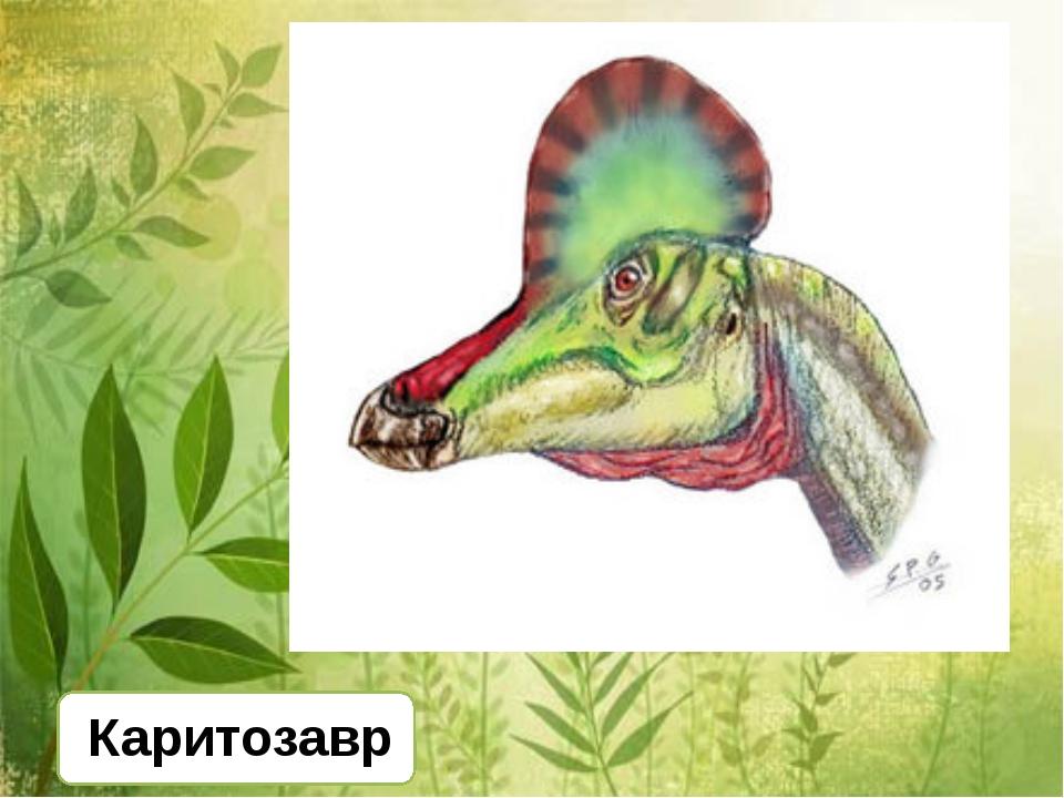 Каритозавр
