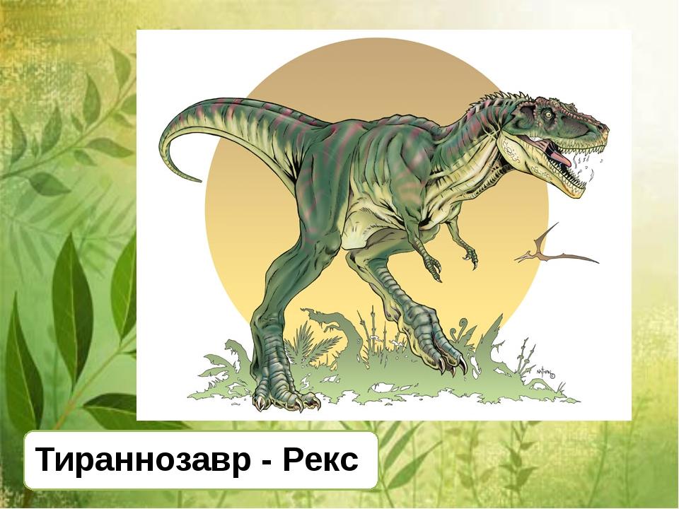 Тираннозавр - Рекс
