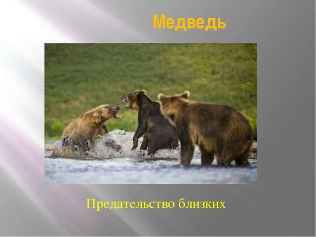 Медведь Предательство близких