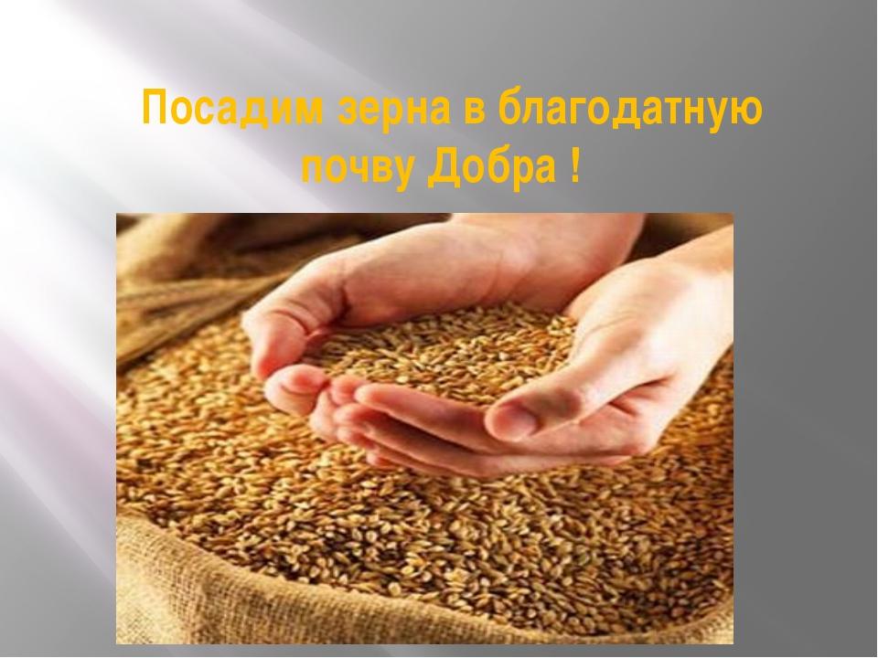 Посадим зерна в благодатную почву Добра !