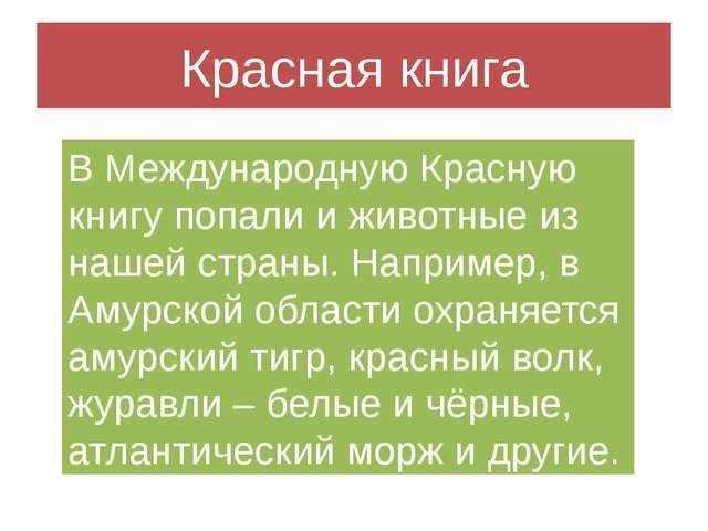 Красная книга В Международную Красную книгу попали и животные из нашей страны...