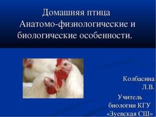 Домашняя птица Анатомо-физиологические и биологические особенности. Колбасина