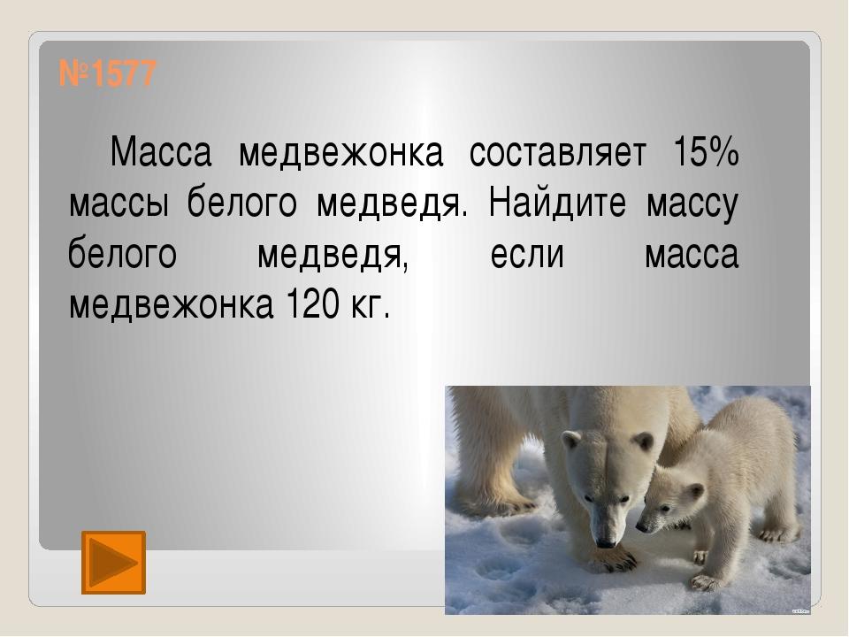 №1577 Масса медвежонка составляет 15% массы белого медведя. Найдите массу бе...