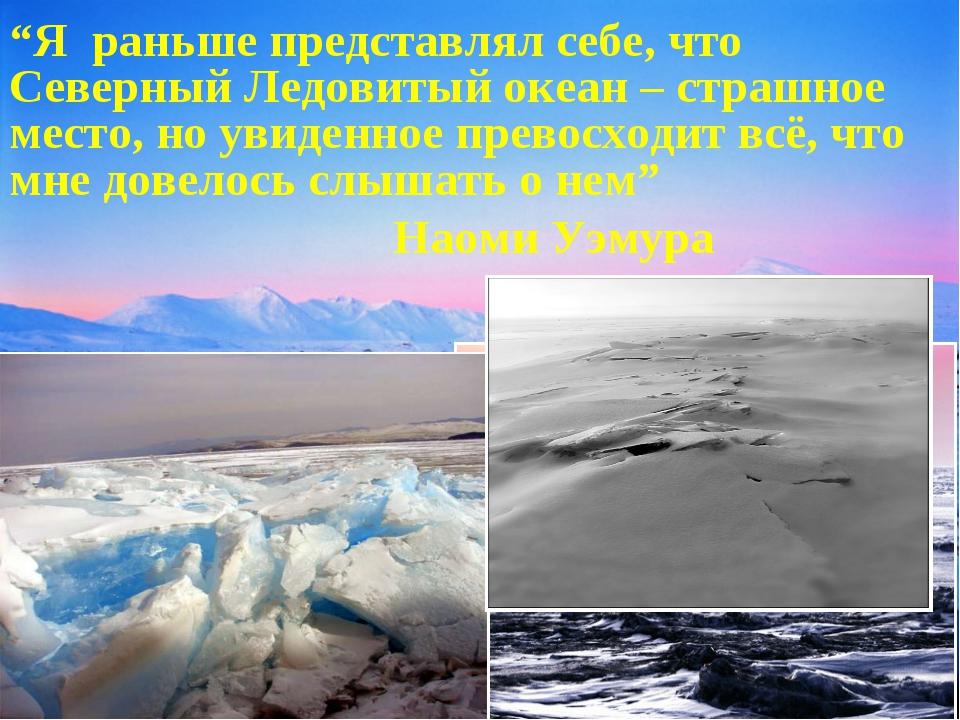 """""""Я раньше представлял себе, что Северный Ледовитый океан – страшное место, но..."""