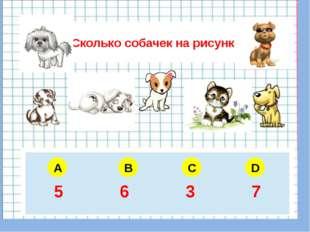Сколько собачек на рисунке A B C D 5 6 4 3 5 6 3 7
