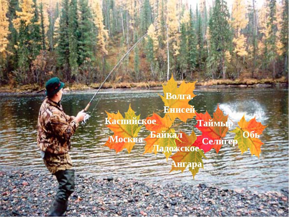 Новости об работы на реке дору - саратов